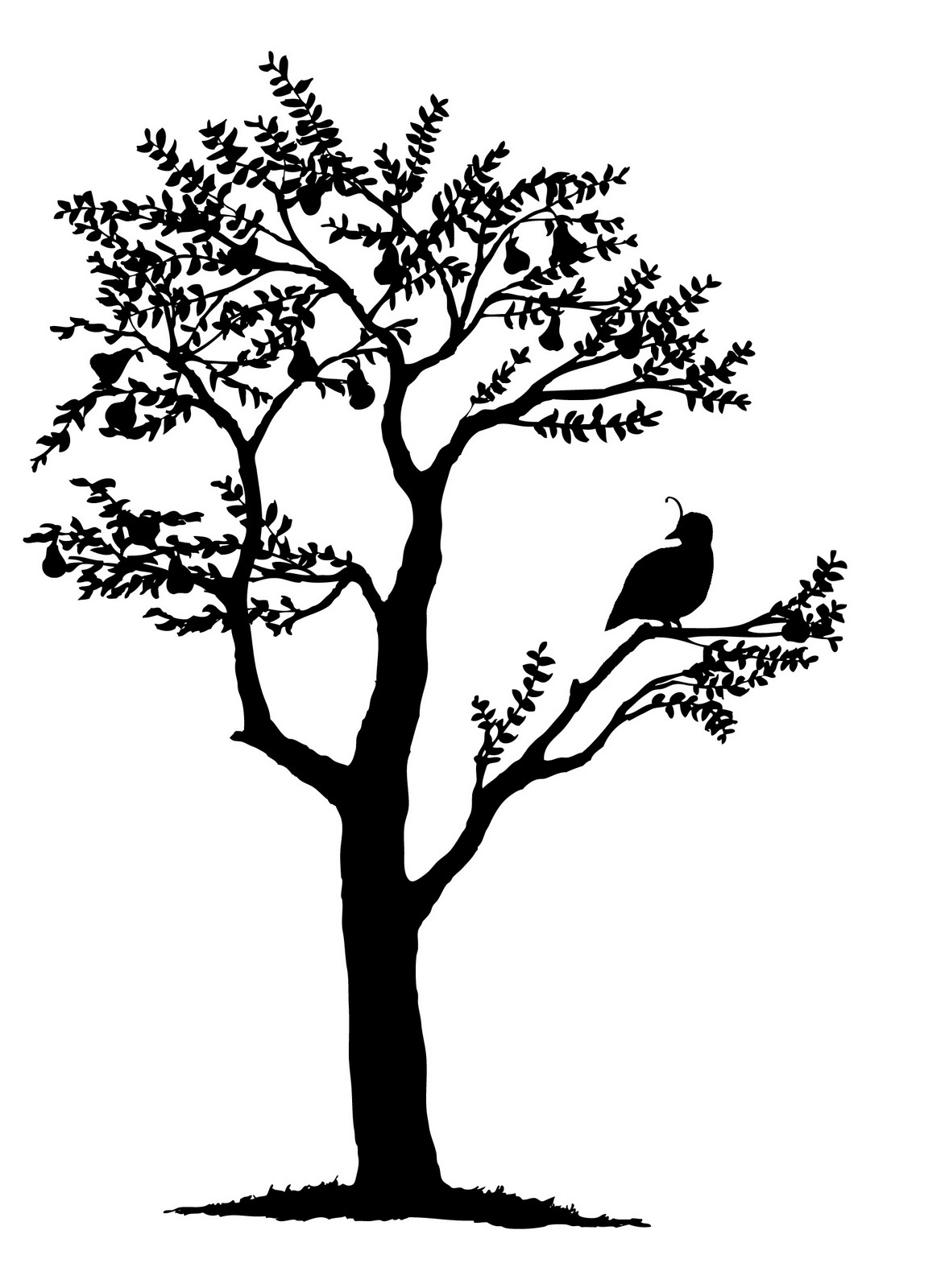 1173x1600 Francesca Greenwood Partridge In A Pear Tree