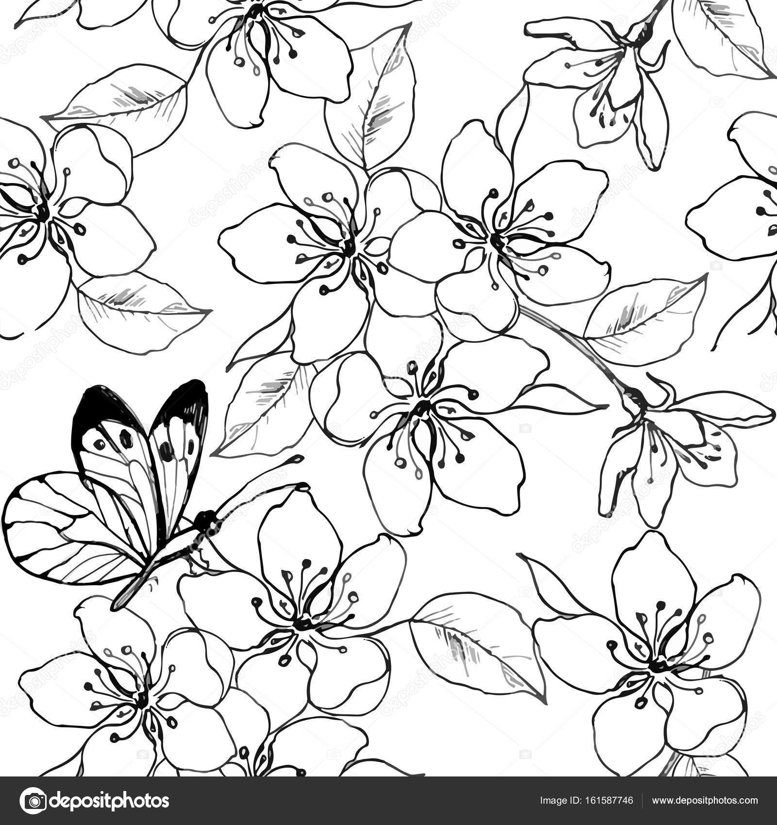 1600x1700 Hand Drawn Branch Of Cherry Blossom, Pear, Apple Tree