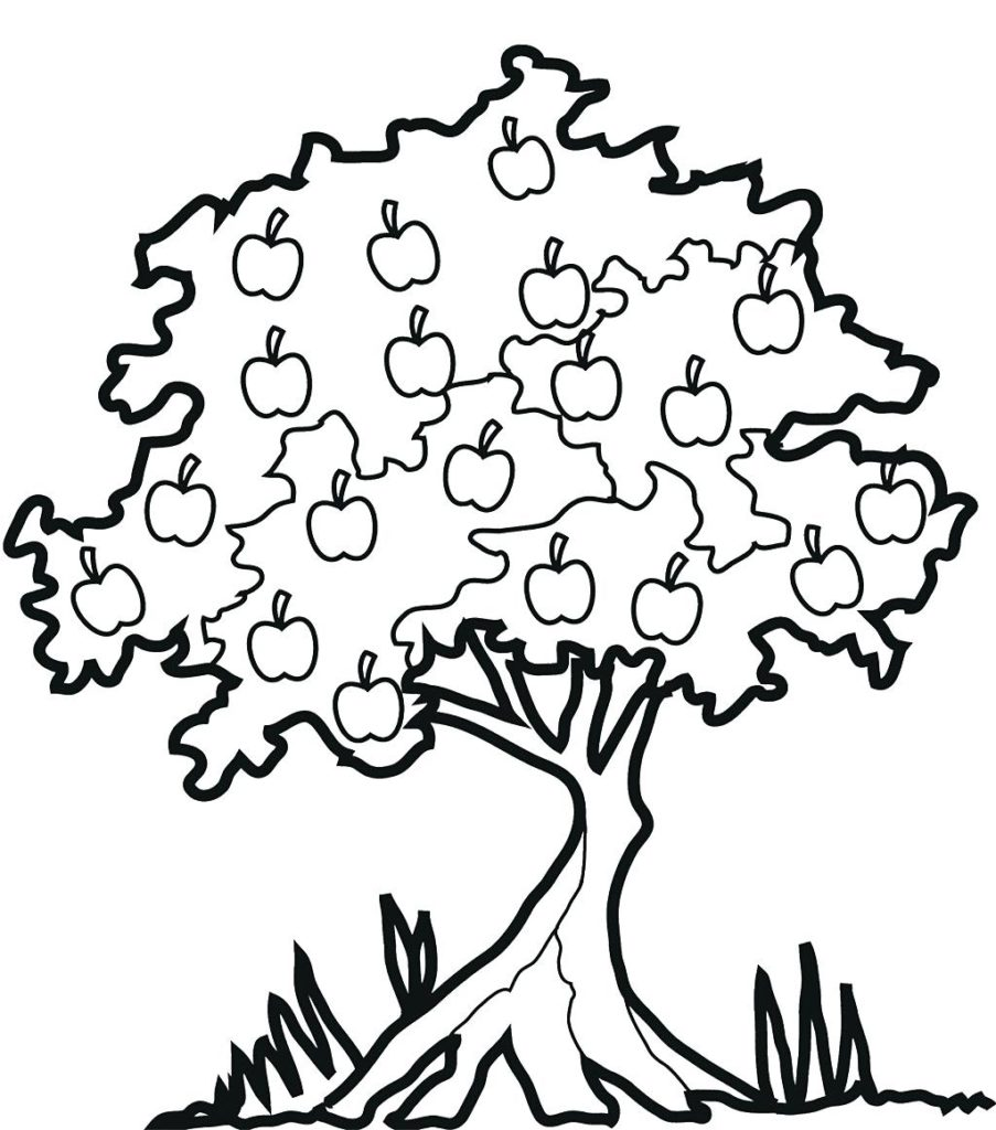903x1024 Plants And Trees Coloring Pages In Cute Tree With Leaves Pears