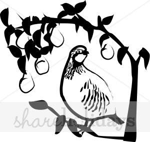 300x283 Black And White Partridge In A Pear Tree Clipart Winter Wildlife