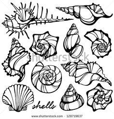 236x246 Shells Tattoo Artist Miss Sita Done