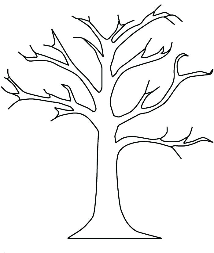 700x825 Good Tree Printable Coloring Page Fee Free Pages For Kids Pecan