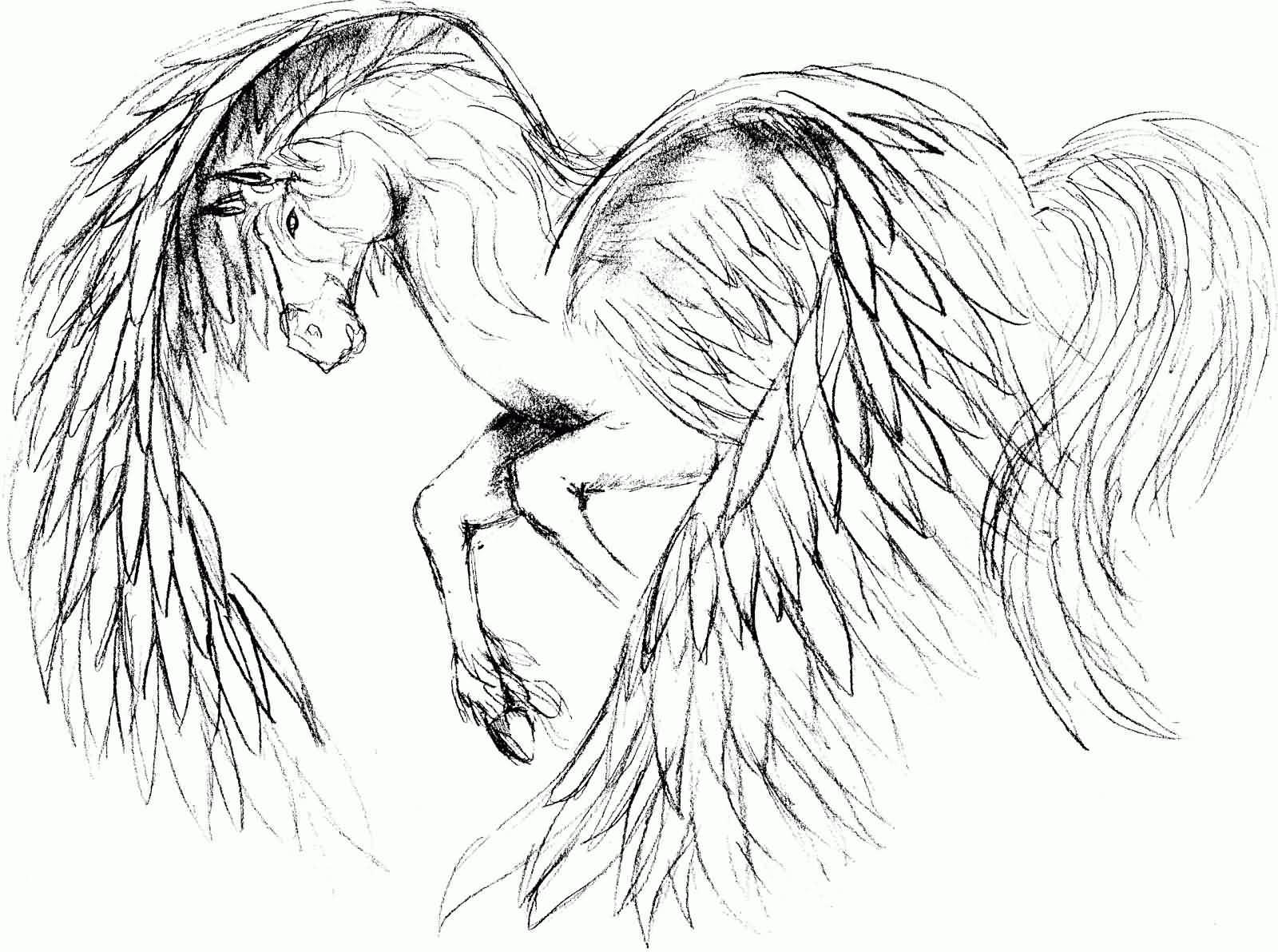 Pegasus Drawing at GetDrawings | Free download