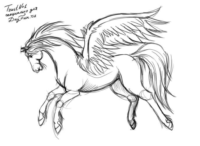 687x500 How To Draw Pegasus Step By Step