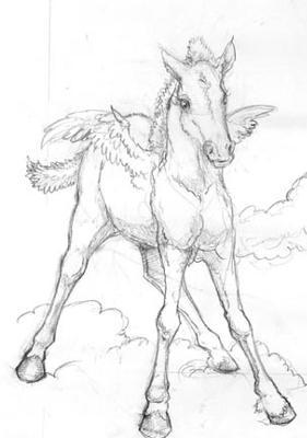 281x400 Pegasus Foal