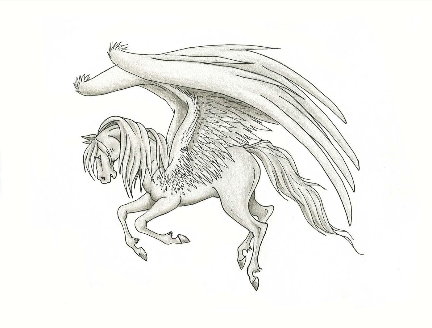 1400x1061 Pegasus By Lizzy23