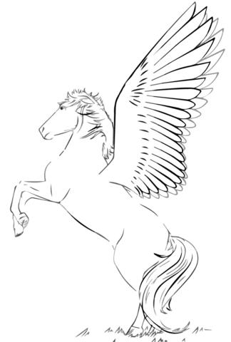 324x480 Rearing Pegasus Coloring Page Free Printable Coloring Pages