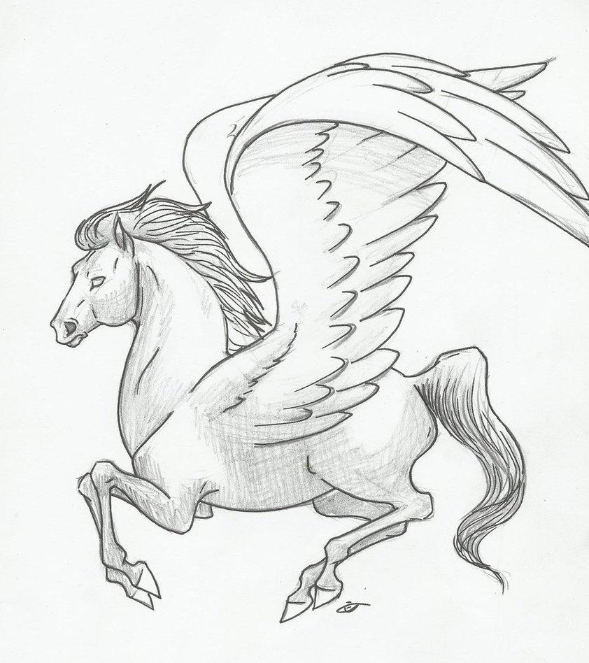 842x948 Winged Pegasus By Huntergirl463