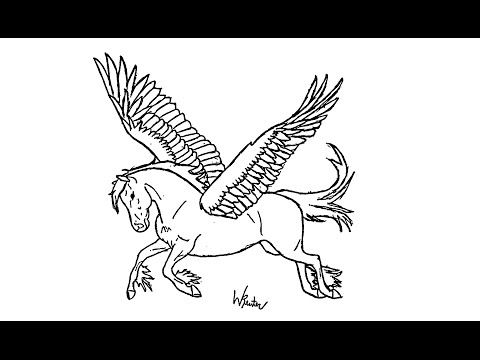 480x360 How To Draw A Pegasus (Horse With Wings)