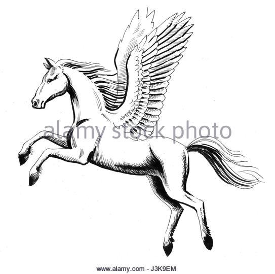 543x540 Flying Pegasus Stock Photos Amp Flying Pegasus Stock Images