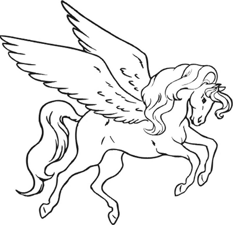 795x768 Pegasus To Color Free Coloring Good Draw Photo Unicorn Fairy Tales