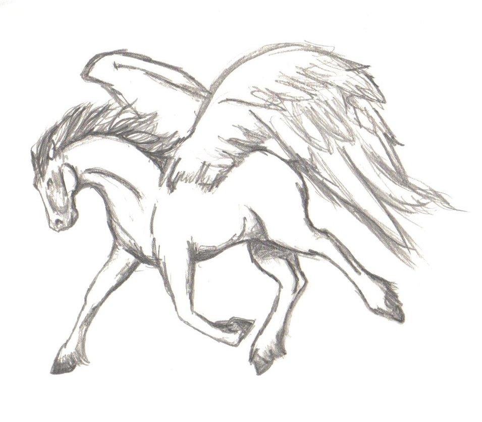 955x836 Pegasus By Charlib1