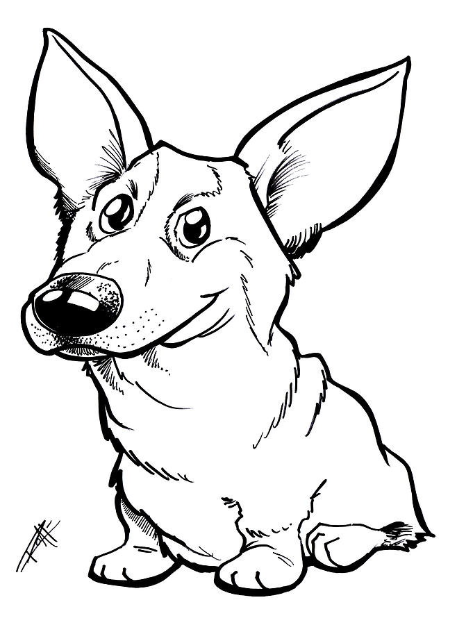 658x900 Welsh Corgi Drawings Fine Art America