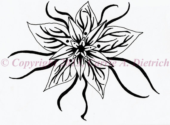 570x418 Simple Pen And Ink Drawings Of Flowers Art, Pen And Ink Flower