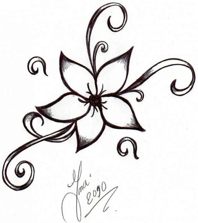 671x757 Coloring Pages Flower Drawing Designs Drawings Pencil Coloring