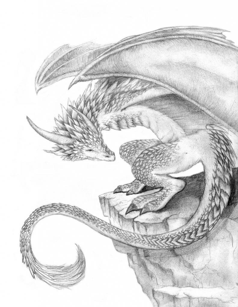 792x1024 Dragon Drawings In Pencil