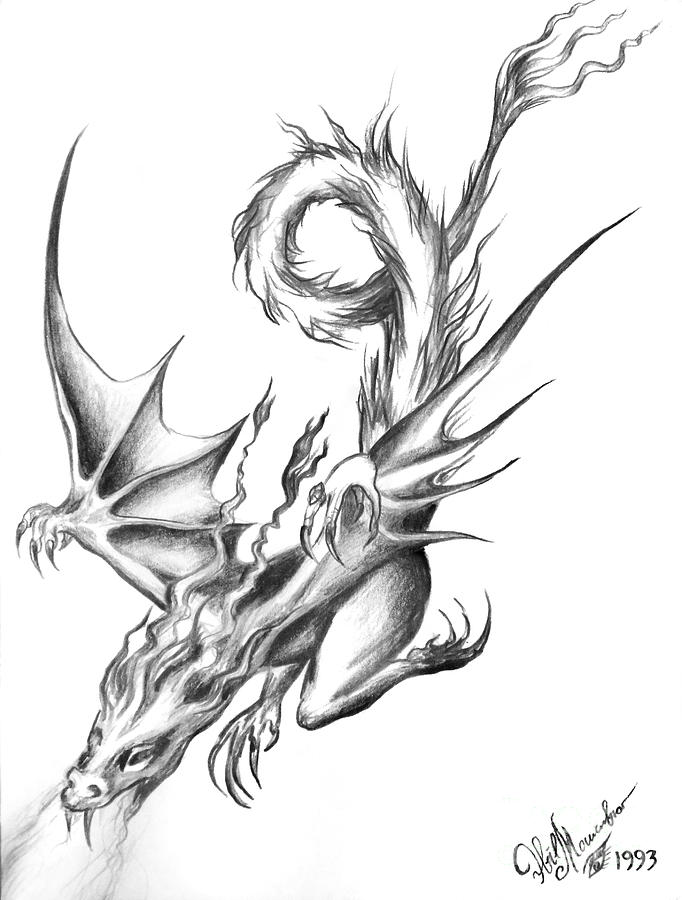 682x900 Dragon. Pencil Drawing Drawing By Sofia Metal Queen