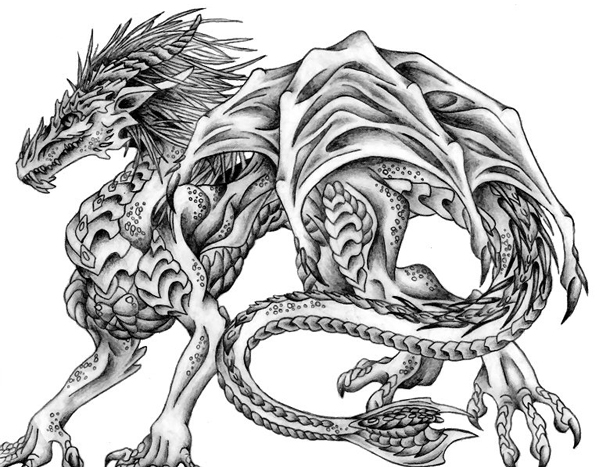 600x467 Excellent Pencil Drawings Of Dragon Pencil Drawings Of Dragon