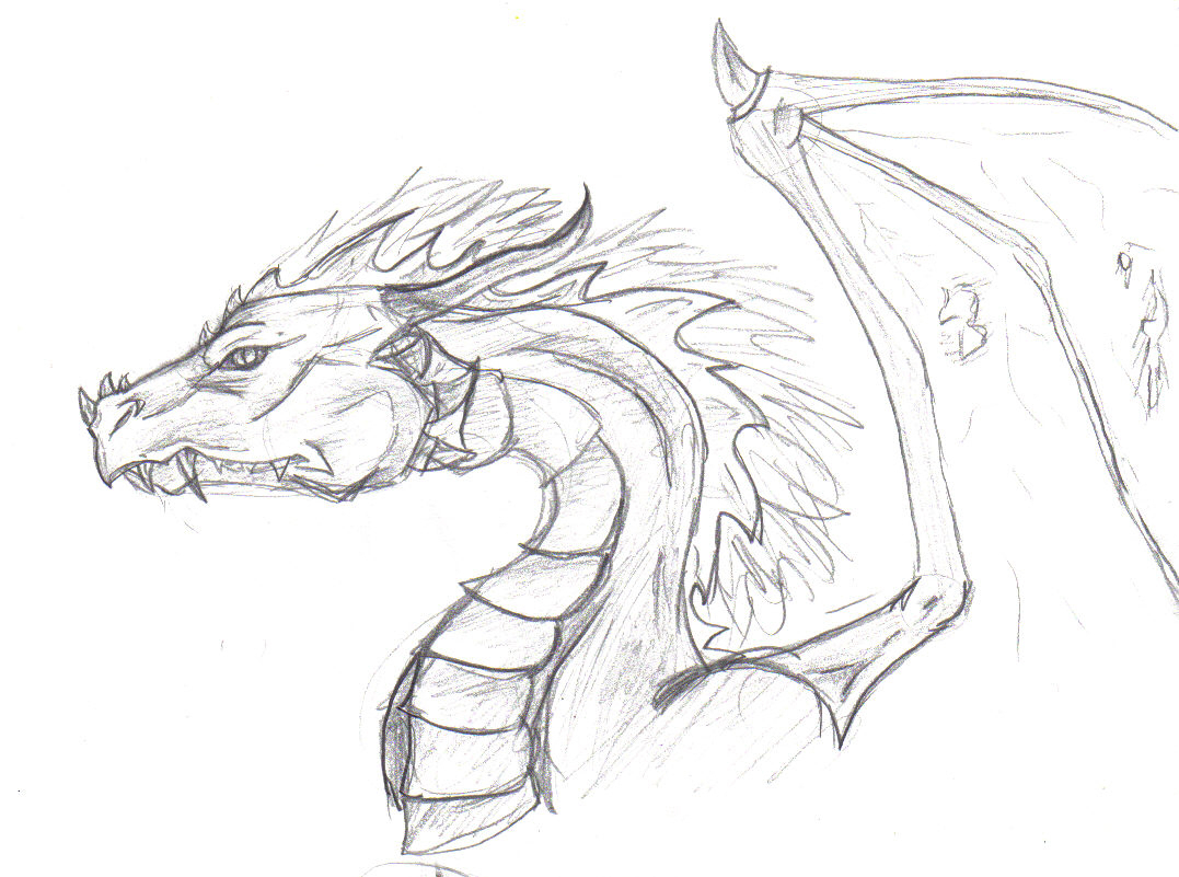 1077x801 Cool Drawing Of Dragons Horse Drawing Pencil