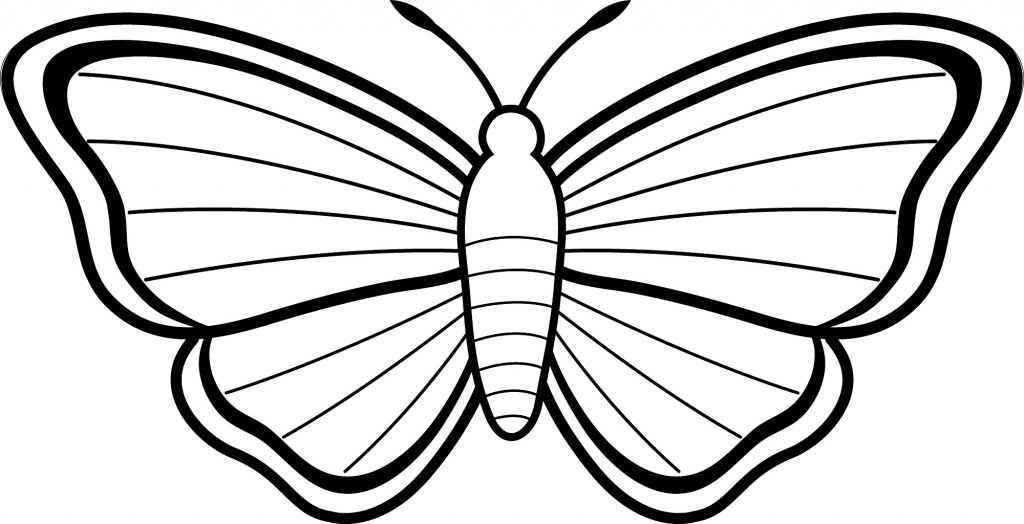 1024x524 pencil drawing for kids butterfly drawing kids how to draw
