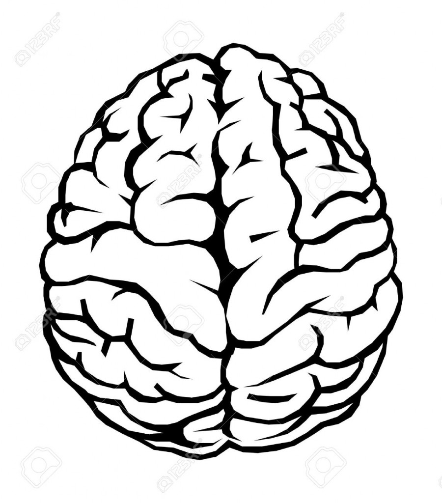 900x1024 Drawing Simple Brain Simple Brain Drawing Outline