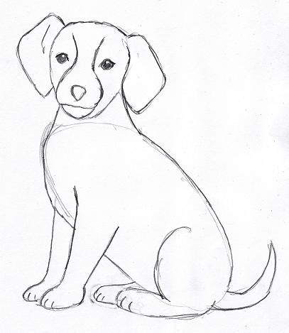 407x469 Gallery Dog S Easy Pencil Drawing,