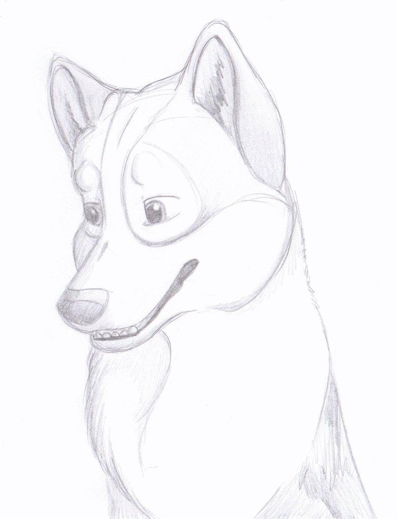 782x1022 Trevor Headshot Pencil Drawing By Xmush Kennelsx