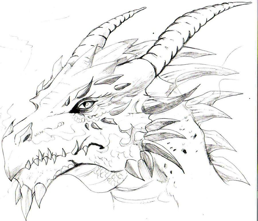 900x770 Gallery Drawing Of A Dragon Head
