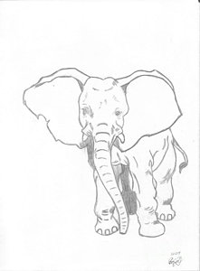 221x300 Elephant Pencil Drawing Drawings