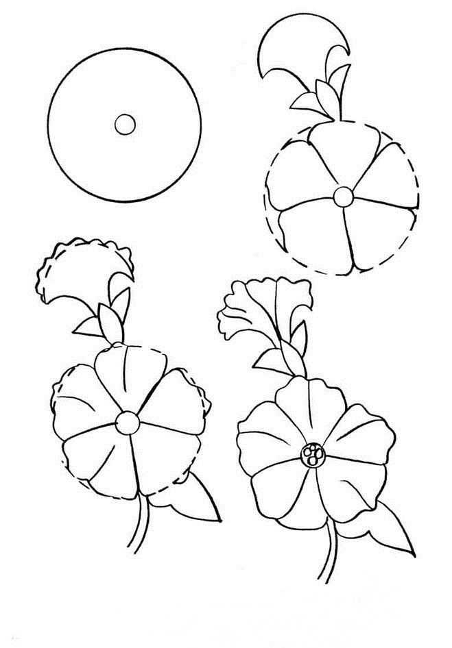 659x946 How To Draw A Simple Flower Step By Step With Pencil 18 Lessons