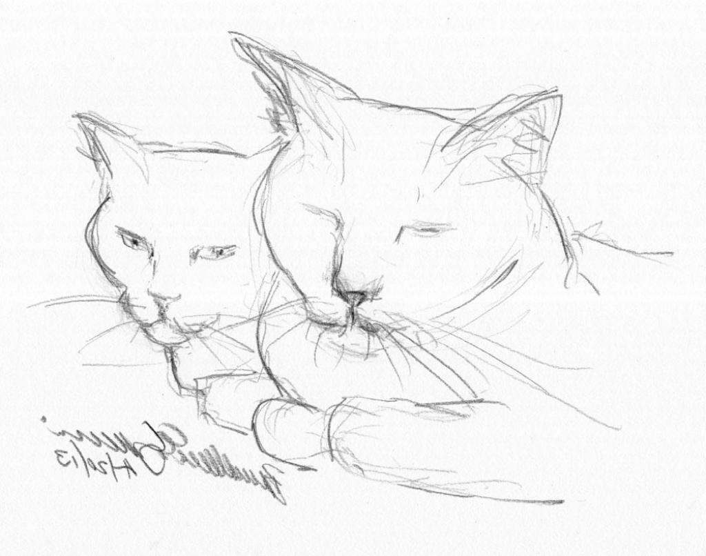 1024x806 simple pencil drawings animals simple pencil drawings
