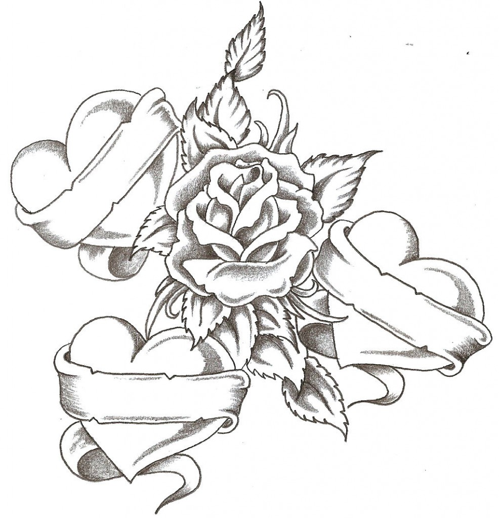 986x1024 Heart And Rose Love Drawings