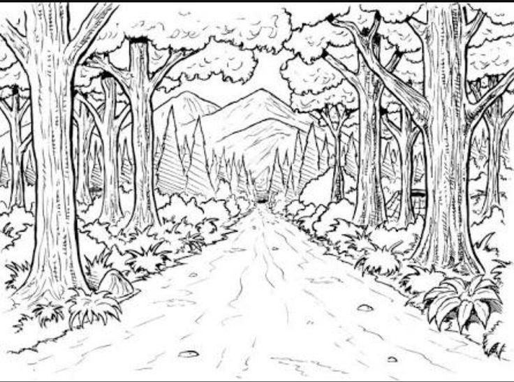 736x547 105 Best Coloring Pages Images On Pinterest Books