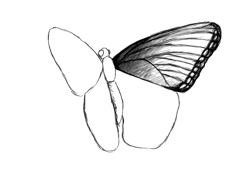 920x753 Drawn butterfly flying butterfly