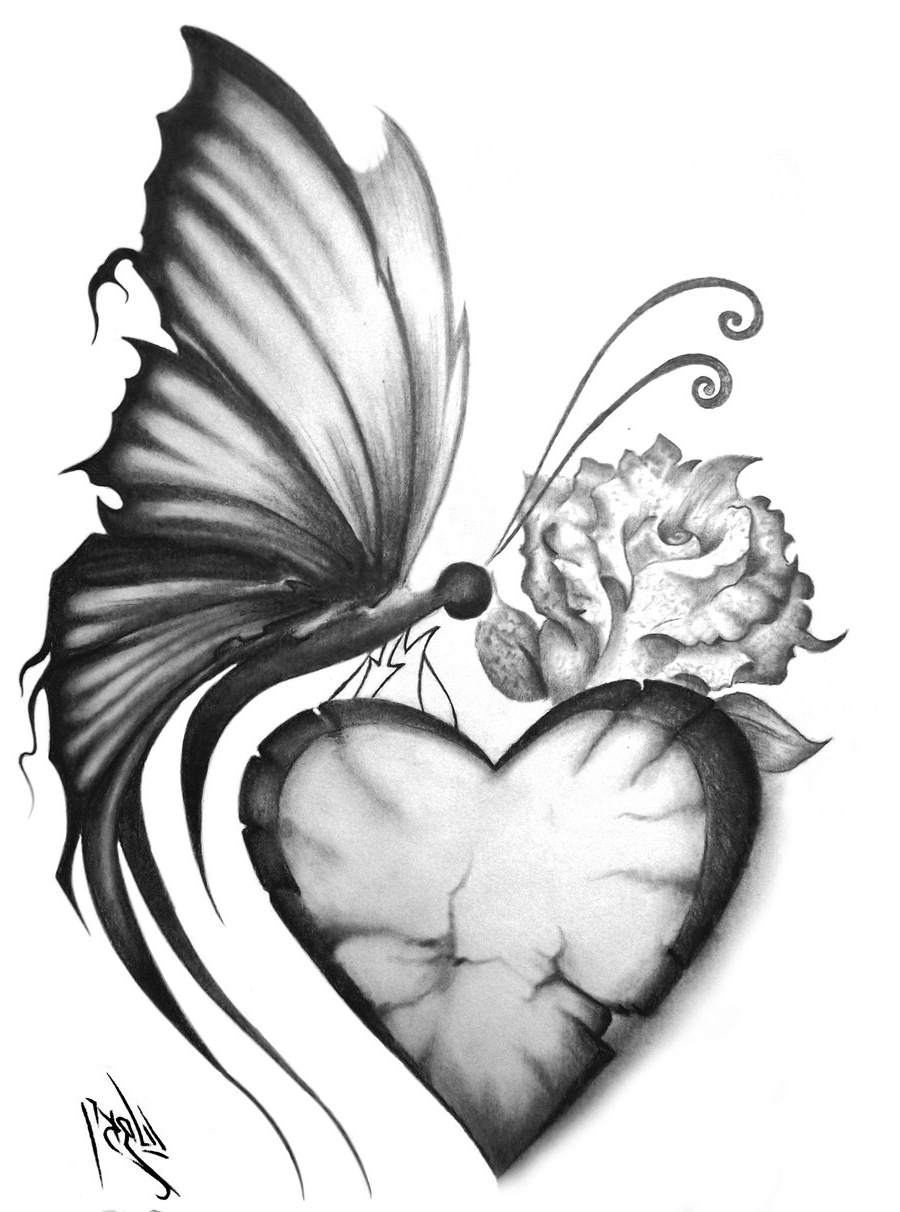 900x1212 Pencil Sketches Of Butterflies On Flowers Pencil Sketches Of
