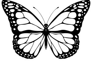 300x210 Abstract Butterfly Drawing Abstract Clipart Butterfly