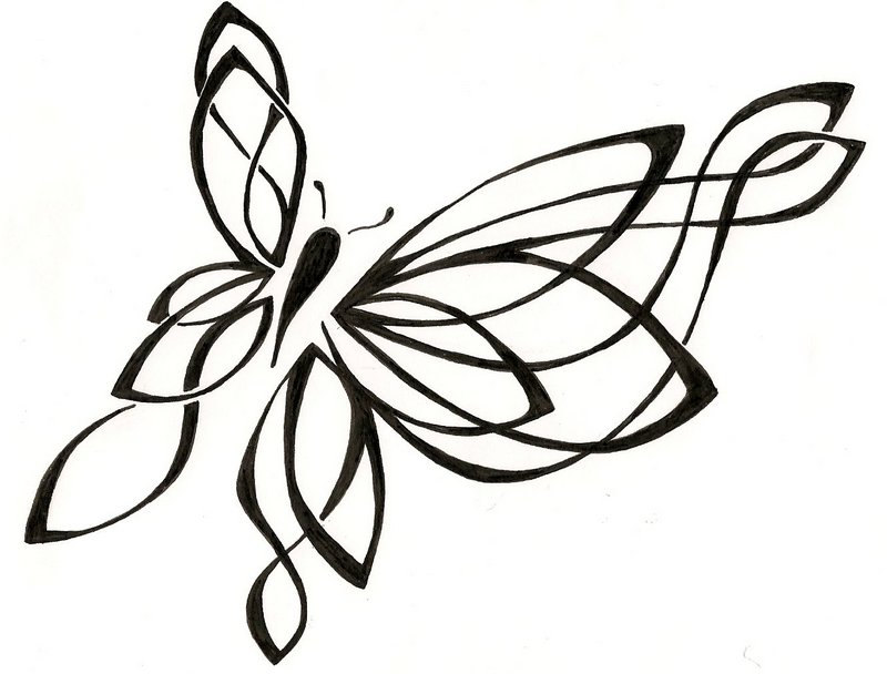 800x608 Monarch Butterfly Drawings In Pencil