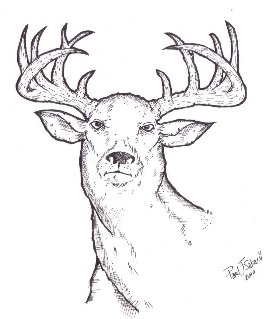 884x1050 Oh Deer! My World Inside Me