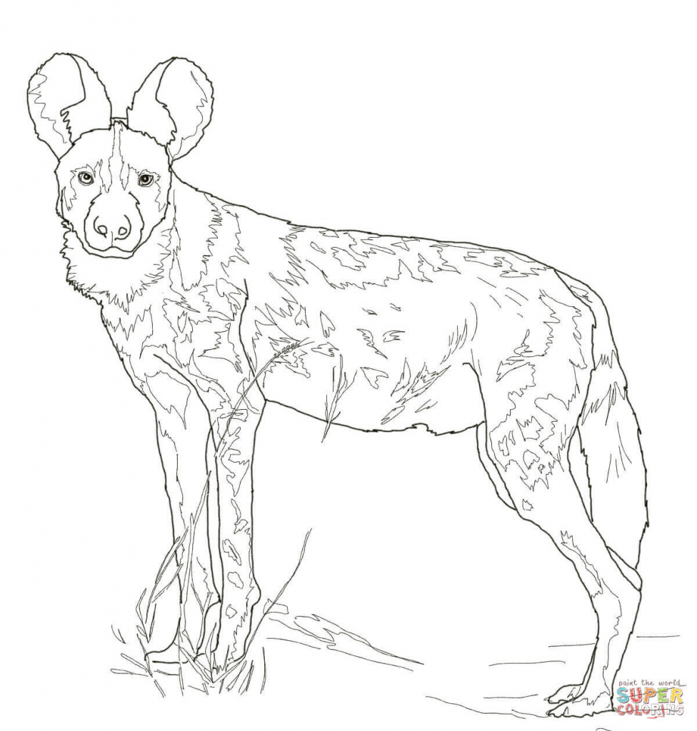 976x1024 How To Draw A African Wild Dog African Wild Dog Coloring Page Free