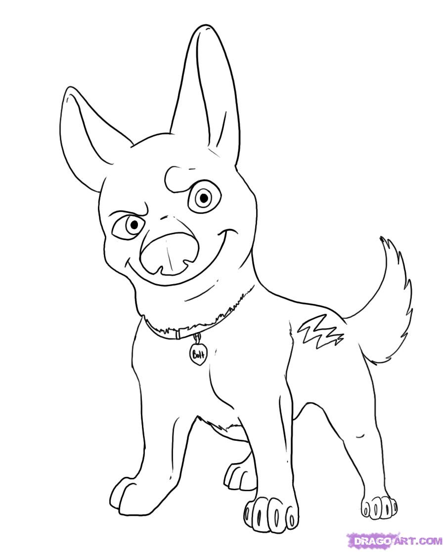 900x1117 How To Draw A Dog Volta With A Pencil Step By Step