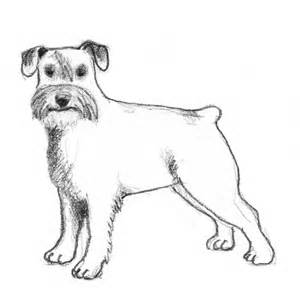 300x292 Pin By Cathy Mattox On Dog Stencils Stenciling And Dog