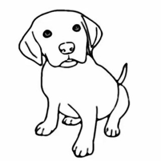 320x320 Simple Dog Drawings In Pencil How To Draw Easy