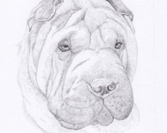 340x270 View Personalized Dog Prints By Hansford800 On Etsy