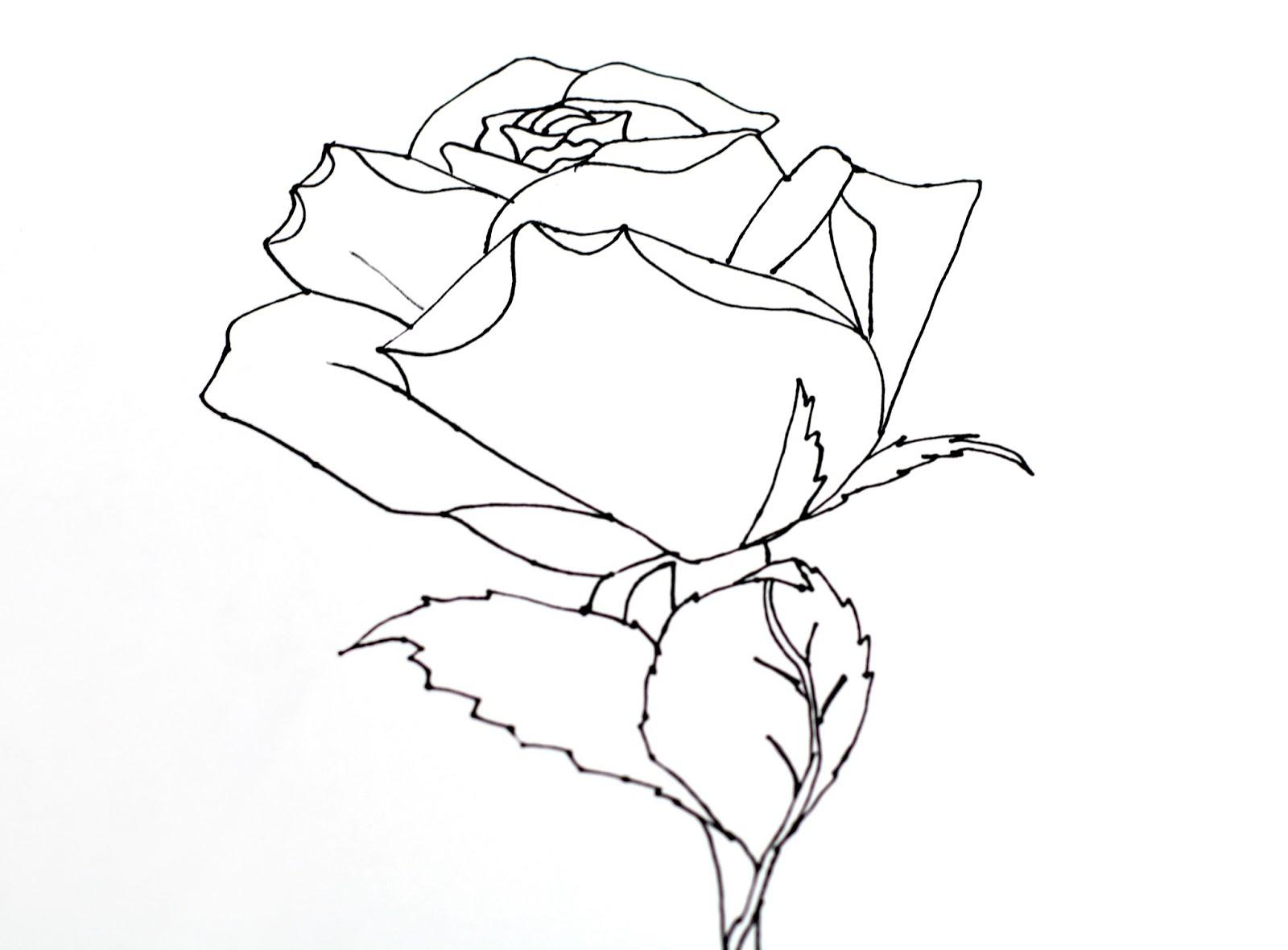 1600x1180 SmART Class Still Life Roses 101