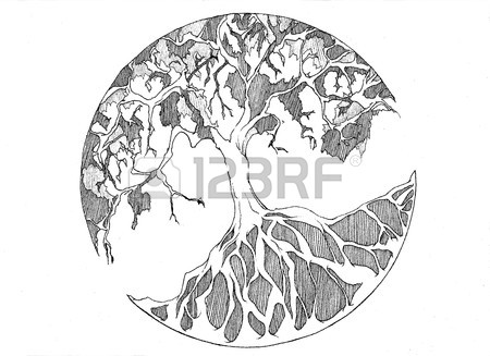 450x327 Tree Of Life Stock Photo, Picture And Royalty Free Image. Image