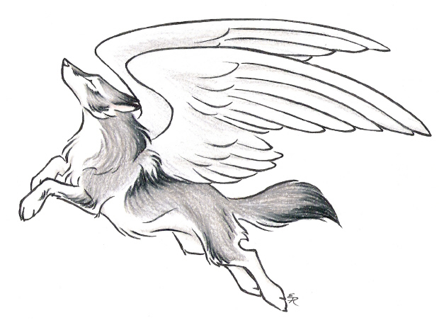 620x459 Mysticalfantasy Leaping Wolf Drawing With Wings Tattoo Drawings