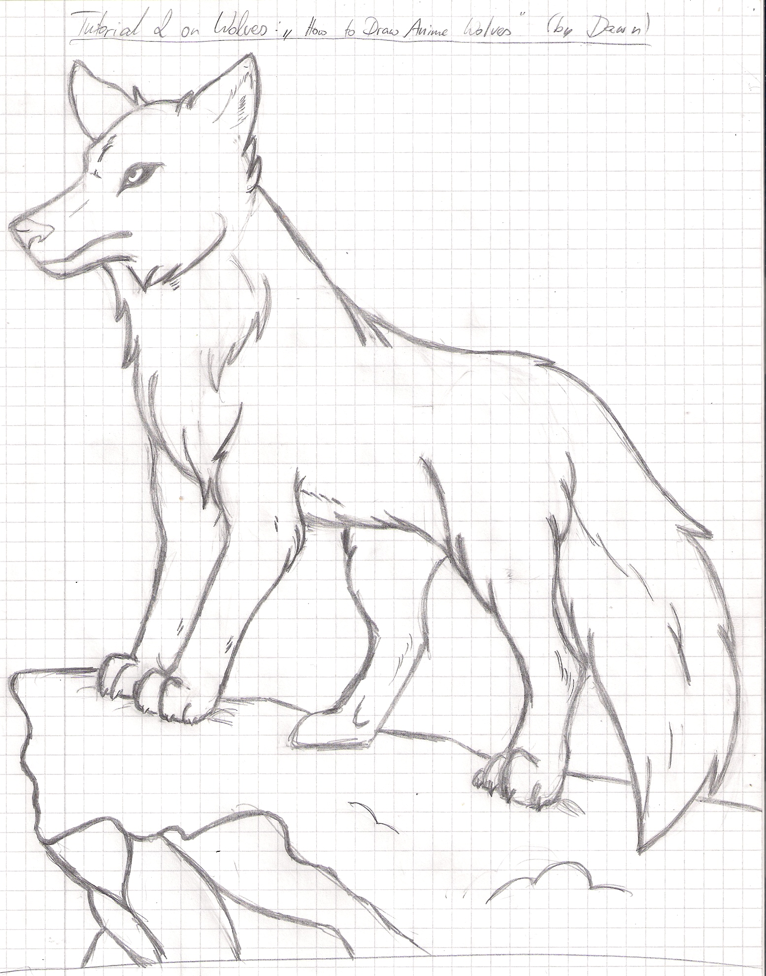 1555x1981 Anime Wolves Drawings How To Draw Cute Wolf Drawings Wolf Chainimage