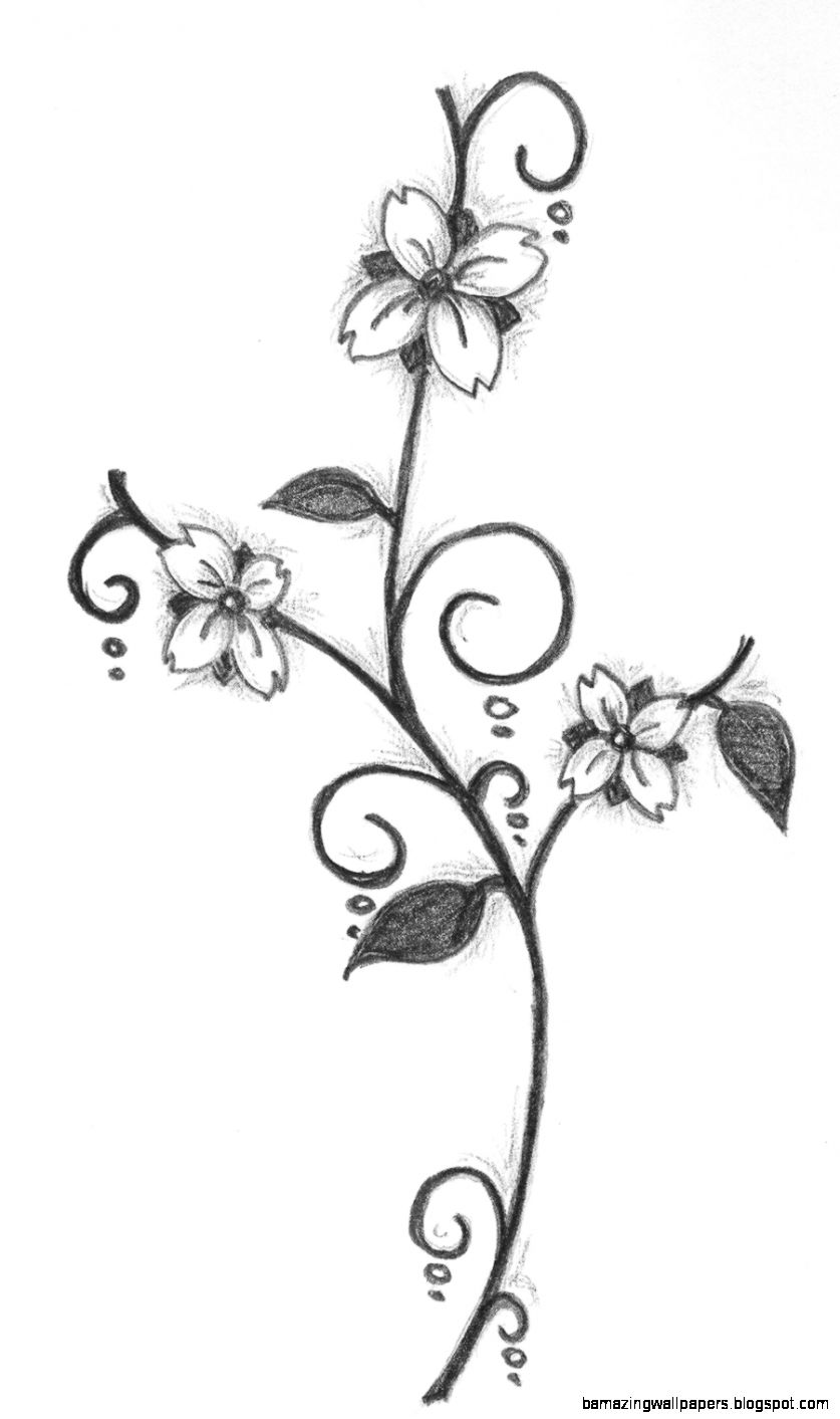 837x1413 Simple Flower Drawing In Pencil Amazing Wallpapers