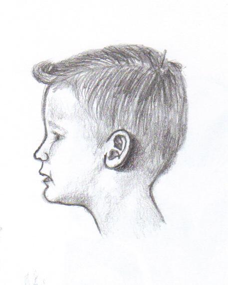 457x572 Profile Sketch