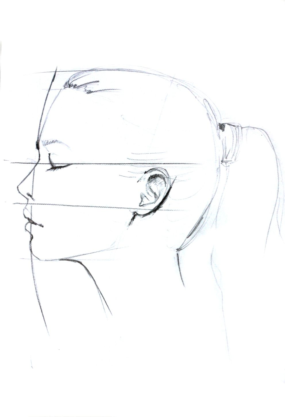 992x1448 Profile Drawing By Elena Ciuprina Elena Ciuprina Illustration